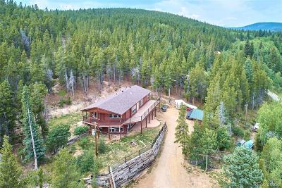 Single Family Home Active: 586 Lower Travis Gulch Road