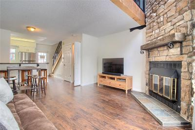 Condo/Townhouse Sold: 1683 South Blackhawk Way #B