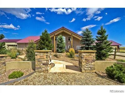 Franktown CO Single Family Home Active: $4,900,000