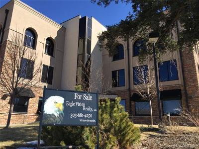 Castle Rock Income Active: 103 4th Street
