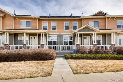 Douglas County Condo/Townhouse Active: 9433 Ashbury Circle #104