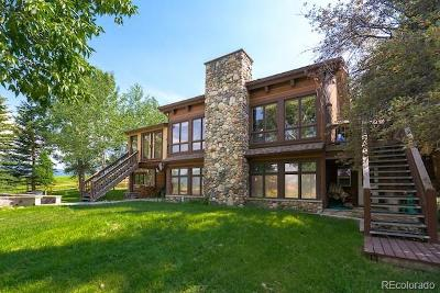 Steamboat Springs Single Family Home Active: 33550 Emerald Meadows Drive