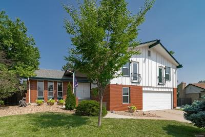 Denver Single Family Home Active: 4068 South Willow Way