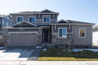 Castle Pines Single Family Home Active: 6583 Merrimack Drive