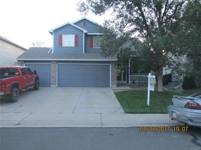 Single Family Home Under Contract: 12909 Hudson Court
