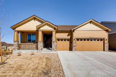 Cobblestone Ranch Single Family Home Active: 7239 Oasis Drive