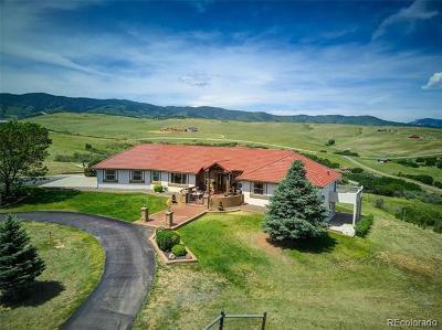 Sedalia Single Family Home Active: 4791 Mustang Circle