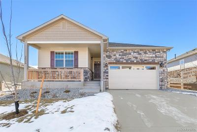 Castle Rock Single Family Home Active: 2026 Shadow Creek Drive