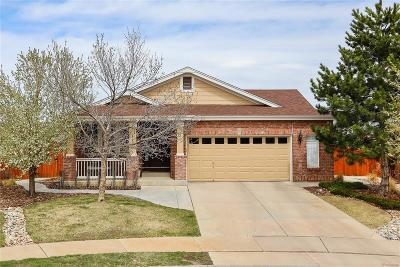 Aurora Single Family Home Under Contract: 20953 East Girard Drive