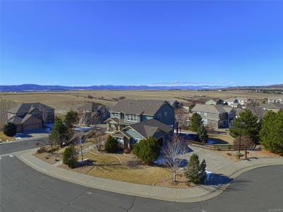 Castle Rock Single Family Home Under Contract: 5203 Blue Jay Circle