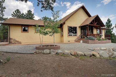 Nathrop Single Family Home Active: 13103 County Road 261 J
