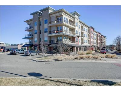 Englewood Condo/Townhouse Active: 10111 Inverness Main Street #301