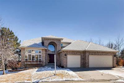 Arapahoe County Single Family Home Active: 6328 South Jamaica Court
