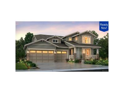 Parker Single Family Home Active: 8808 Sassafras Street