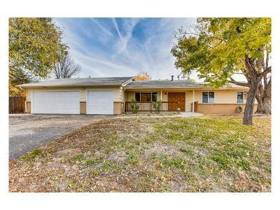 Denver Single Family Home Active: 1298 South Clinton Street