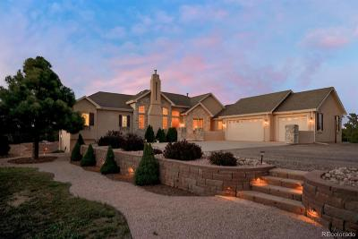 Monument Single Family Home Under Contract: 1430 Burgundy Court