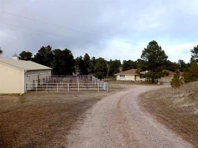Elbert County Single Family Home Under Contract: 1553 County Road 150