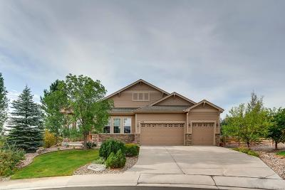 Parker Single Family Home Under Contract: 4744 Nighthorse Court