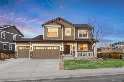 Douglas County Single Family Home Active: 2791 Black Canyon Way