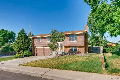 Arvada Single Family Home Active: 8197 Dudley Way