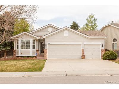 Littleton Single Family Home Active: 6882 Lions Head Parkway
