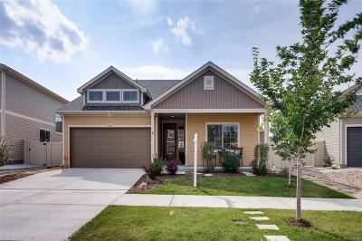 Denver Single Family Home Active: 4961 Ceylon Way