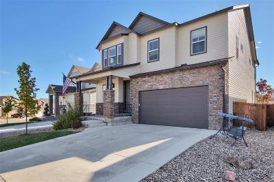 Castle Rock Single Family Home Under Contract: 3932 Trail Stone Circle