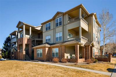 Parker Condo/Townhouse Under Contract: 12914 Ironstone Way #304