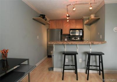 Denver Condo/Townhouse Active: 1125 Washington Street #604