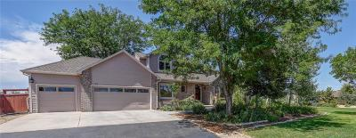 Mead Single Family Home Under Contract: 101 Silo Court