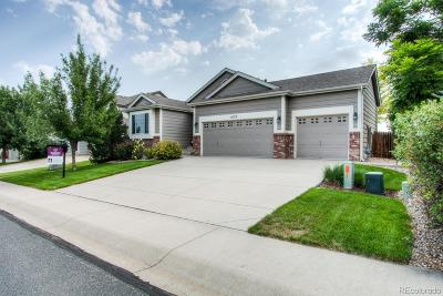 Johnstown Single Family Home Active: 1625 Pintail Court