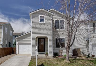 Single Family Home Under Contract: 4689 South Swadley Way