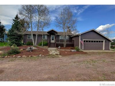Evergreen Single Family Home Sold: 8406 South Custer Lane