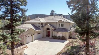 Conifer, Evergreen Single Family Home Active: 32240 Blue Springs Drive