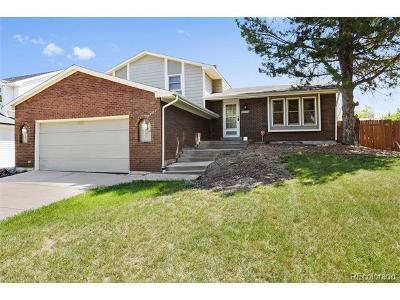 Morrison Single Family Home Active: 4824 South Yank Way