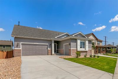 Castle Rock Single Family Home Under Contract: 4445 Sidewinder Loop