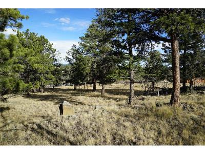 Bailey CO Residential Lots & Land Active: $65,000
