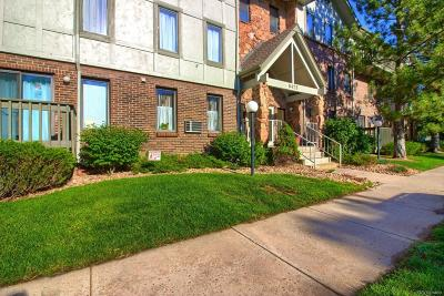 Englewood Condo/Townhouse Under Contract: 6425 South Dayton Street #102