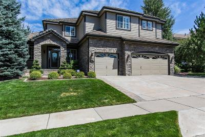 Aurora Single Family Home Active: 22063 East Peakview Drive
