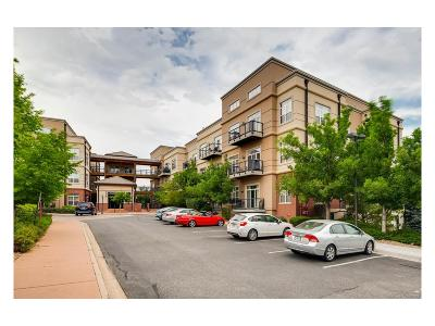 Greenwood Village Condo/Townhouse Active: 5677 South Park Place #211D