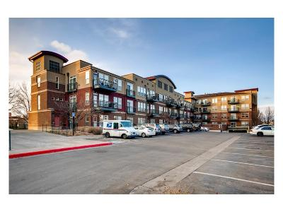 Lone Tree Condo/Townhouse Sold: 10176 Park Meadows Drive #2106