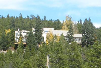 Conifer Single Family Home Under Contract: 32072 Black Widow Drive