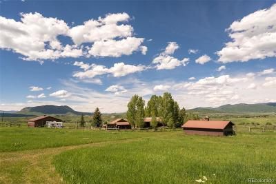 Steamboat Springs Single Family Home Active: 26395 County Road 33a