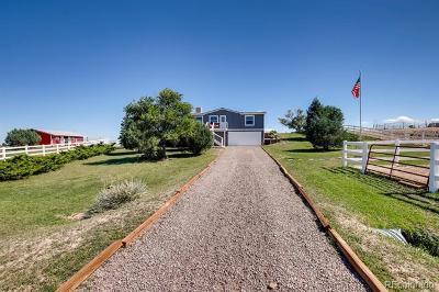 Elbert County Single Family Home Active: 38948 Kittridge Place