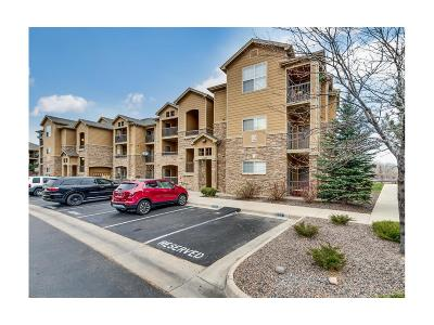 Parker Condo/Townhouse Under Contract: 17497 Nature Walk Trail #108