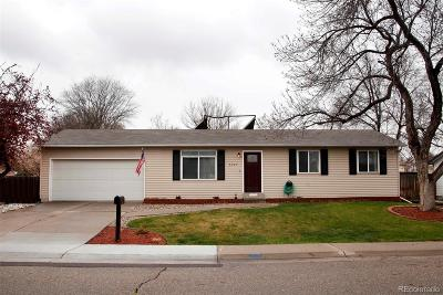 Arvada Single Family Home Active: 7087 Wright Court