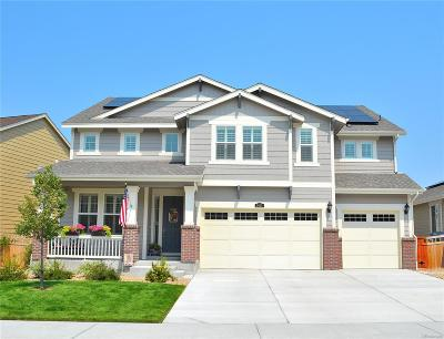 Castle Rock Single Family Home Active: 2610 Leafdale Circle