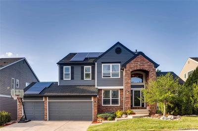 Highlands Ranch Single Family Home Active: 907 Shadowstone Drive