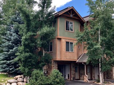 Steamboat Springs Condo/Townhouse Active: 1100 Natures Lane #1