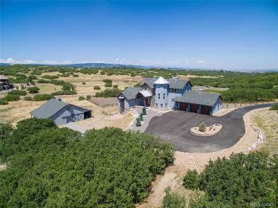 Castle Rock CO Single Family Home Active: $1,190,000